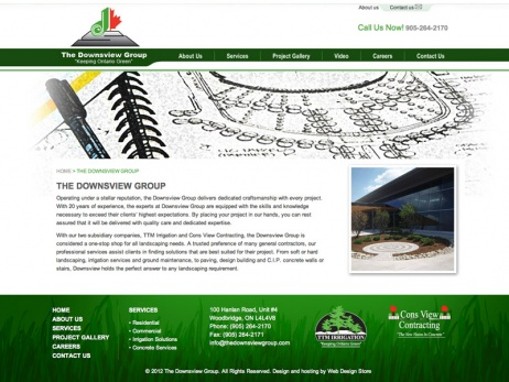The Downsview Group