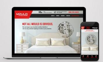 Mould-Solutions-Web-mobile-design-1