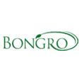 Bongro